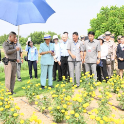 Her Royal Highness Princess Maha Chakri Sirindhorn Proceeds to Observe an Operation Progress of the Chaipattana Foundation Projects in Nakhon Sawan Province