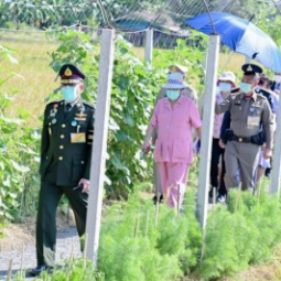 Her Royal Highness Princess Maha Chakri Sirindhorn Observes the Activity of Transplanting Rice Seedlings at Chulachomklao Royal Military Academy in Nakhon Nayok Province