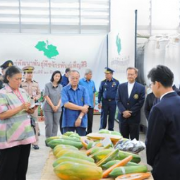 HRH Princess Maha Chakri Sirindhorn Inspects the Progress of the Chakrabandh Pensiri Plant Development Center, Saraburi Province