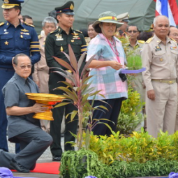 HRH Princess Maha Chakri Sirindhorn Cultivates Rice at Chulachomklao Royal Military Academy