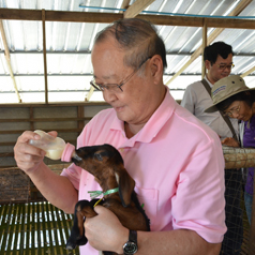 Dr. Sumet Tantivejkul, Secretary-General of the Chaipattana Foundation Visited Goat Housing Farm and Ruminant Research   and Development Center, Prince of Songkla University